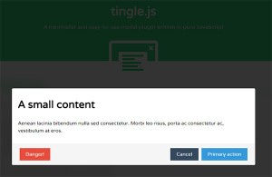 06-tingle-modal-window-js